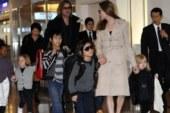 Angelina Jolie y Brad Pitt dejan herencia a sus hijos en partes iguales