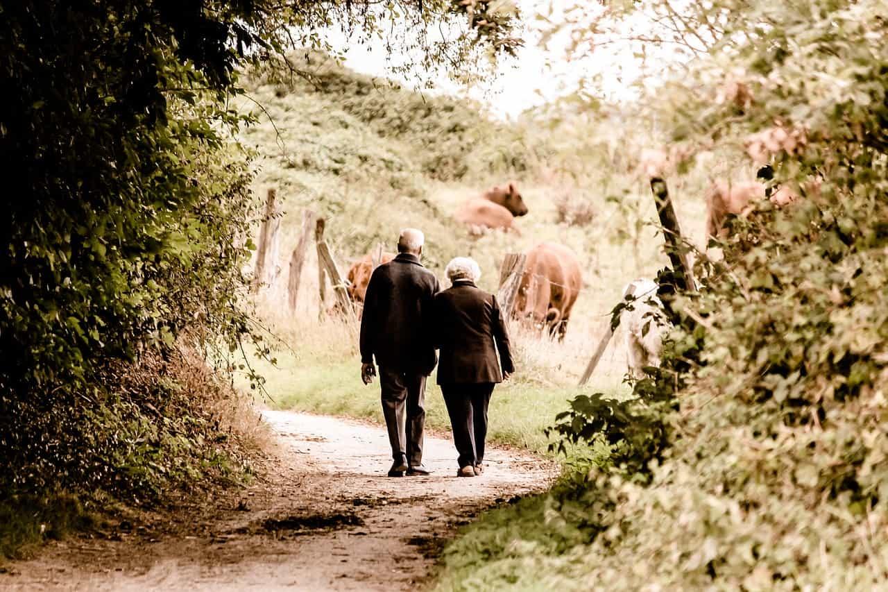 Testamenta - pasos para hacer un testamento de una persona incapacitada I