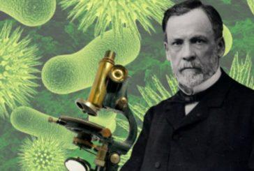 ¿Cuáles fueron los experimentos más importantes de Louis Pasteur?